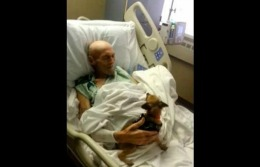 Un american grav bolnav şi-a revenit MIRACULOS după ce şi-a reîntâlnit câinele pierdut // VIDEO