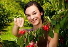 Cireşele sunt fructe-medicament. 4 virtuţi ale acestora