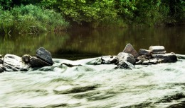 Descoperire șocantă! 12 cadavre cu urme de violenţă, găsite într-un râu din Mexic