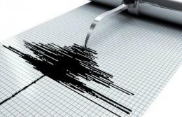 Cutremur puternic în Noua Zeelandă, urmat de un tsunami care a stârnit râsul autorităților