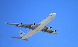 Sute de zboruri au fost anulate. Mii de pasageri sunt afectați de greva piloților de la Lufthansa