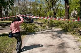 După ciclon: Filip, Dorin şi Dodon