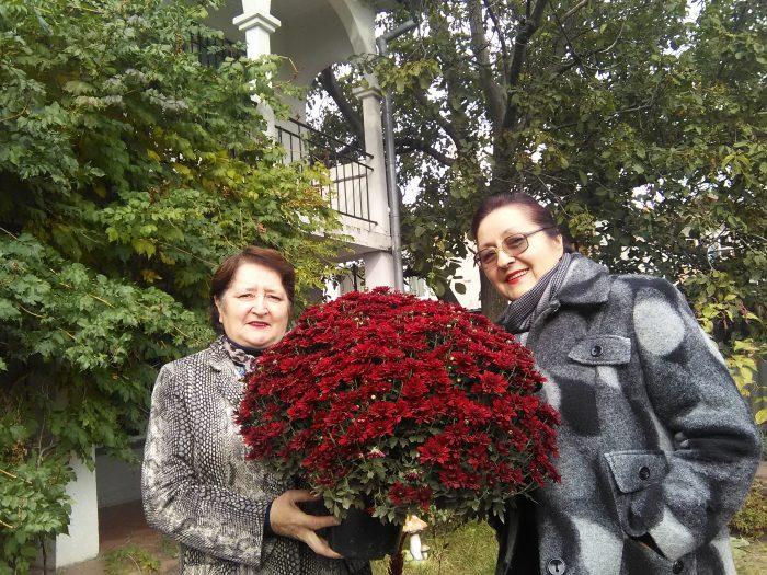 crizanteme pentru sora mea Veronica de ziua ei - 7 octombrie